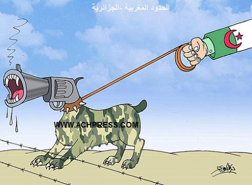 الصحراء.. الخطاب المضلل للجزائر حول حقوق الإنسان لم يعد له أي صدى