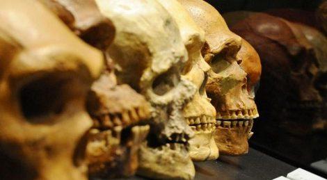اكتشاف عظام مخلوقات ترجع إلى عصور ما قبل التاريخ في كهف بالقرم
